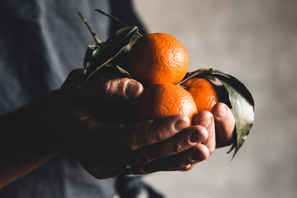 Ripe,Juicy,Sweet,Orange,Mandarins,In,A,Human,Hand,Against