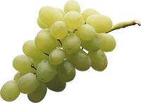 purepng.com-grapesgrapeberryfruitwine-331522415082sygyd